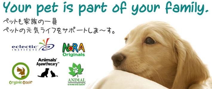 家族の一員のペットの健康維持にeサプリ東京のペット用ハーブサプリメント